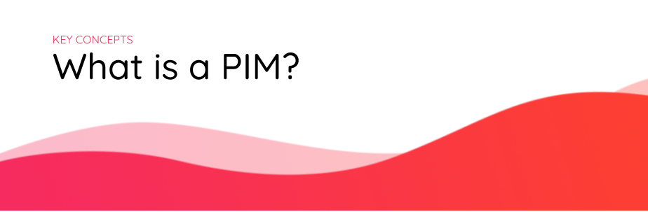 what-is-a-pim